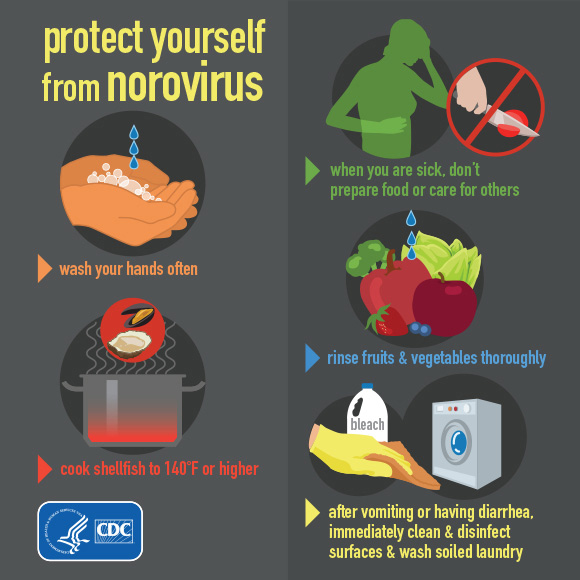 the CDC to remember key steps in avoidance and recovery from the norovirus