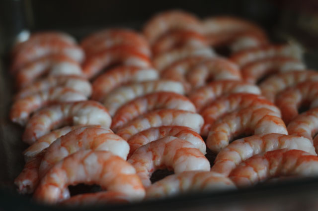 Prawns laid out on a tray